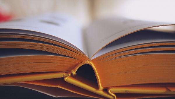 Educazione alla Cittadinanza Globale: dai problemi della scuola alla formazione dei giovani